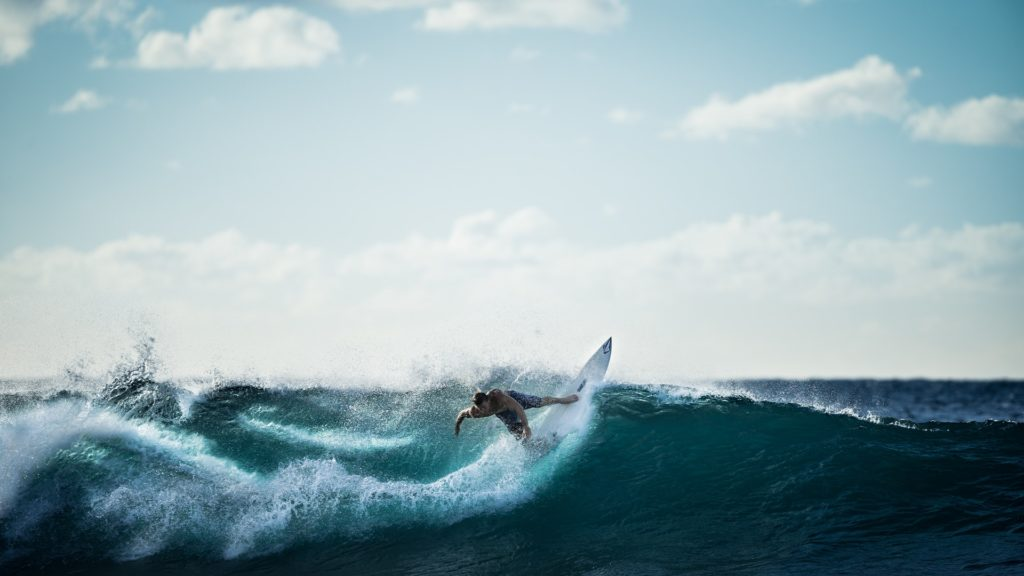 surfer magazine - The perfect wave